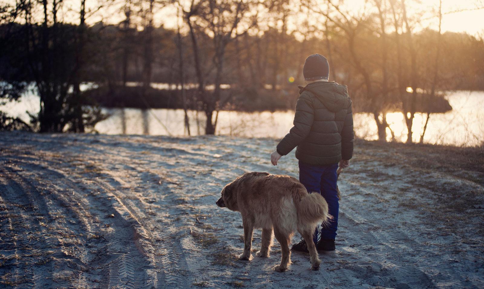 perros_viven_menos